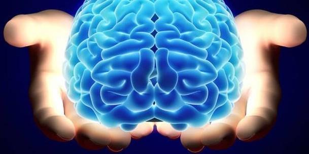 Taze beyin