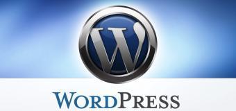 WordPress'de Kullanılmayan Veritabanı Tabloları Nasıl Silinir?