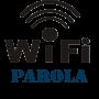 Bilgisayarda Wi-Fi Parolası Nasıl Öğrenilir?