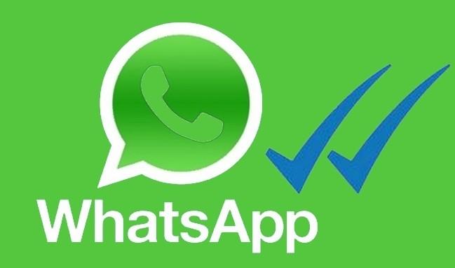 whatsapp fotoğraf ve video
