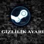 Steam Gizlilik Ayarları 2018