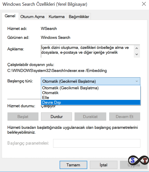 windows search dev