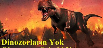 Dinozorların Yok Olmasının Sebebi Ne?