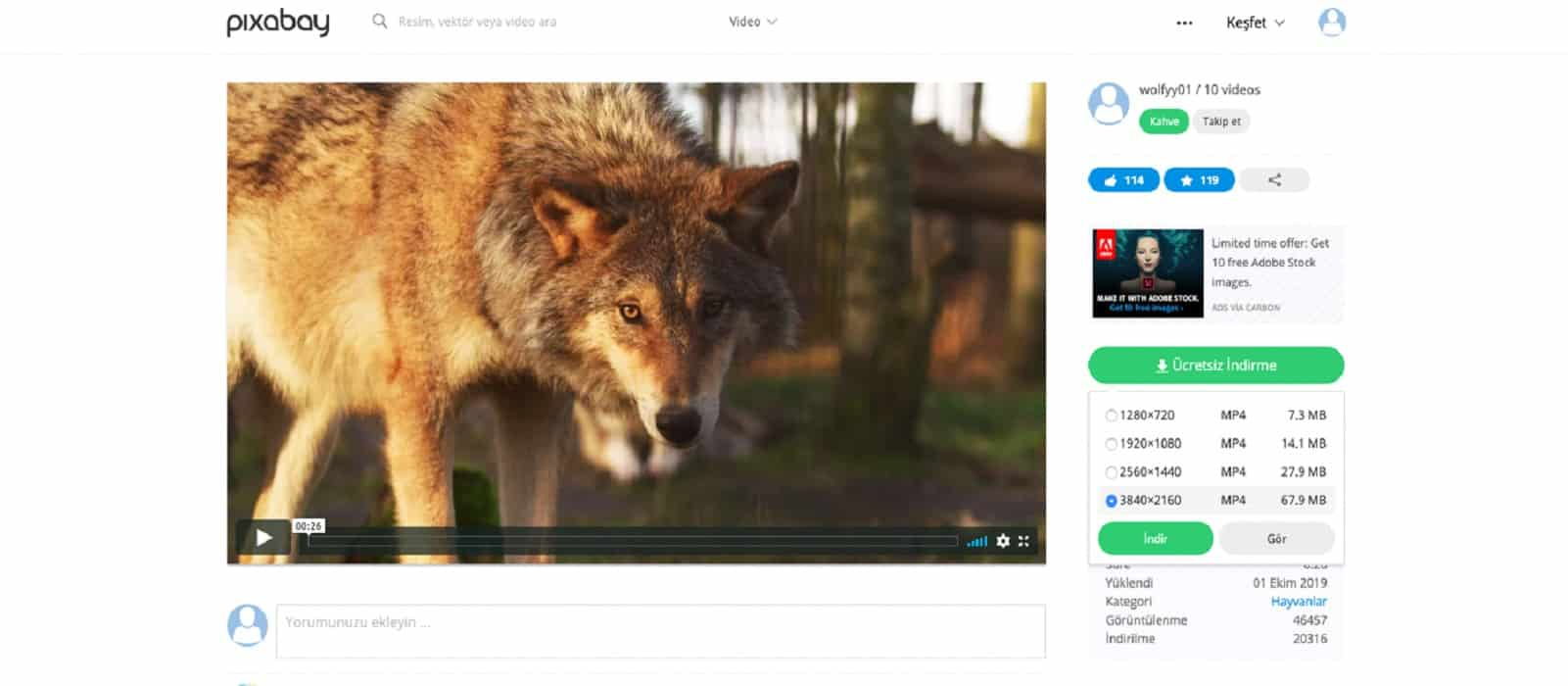 pixabay video mp4