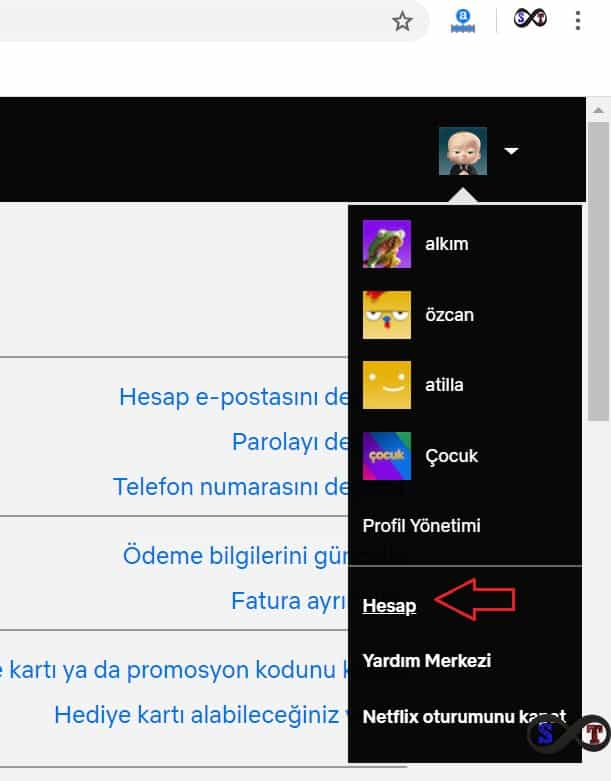 netflix hesap
