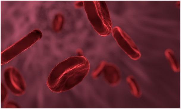 görünmez adam hücre