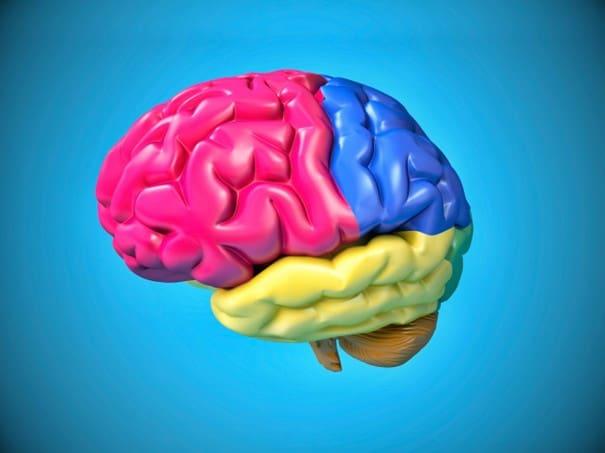 sinestezi ne demek